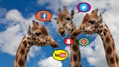 Redes Sociales para Amateurs 1: ¿Qué Son y Cómo se Usan?