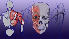Complete Beginner's Guide to Anatomy and Figure Drawing