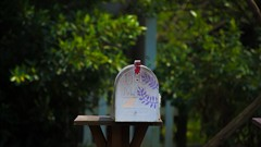 AutoResponder Revelado: venda mais com emails personalizados