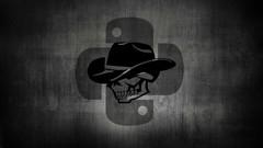 Python Black-Hat voltado para Segurança Computacional