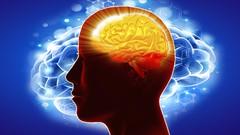 The Millionaire Mind Secrets - create a success mindset fast