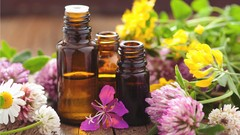 A guide to essential oil