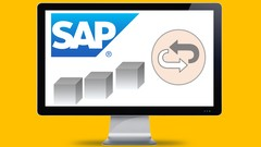 SAP DeepDive - Return SD Order using SAP Best Practice