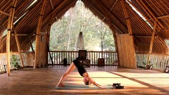 Learn Vinyasa Flow Yoga - Focus on Breathing and Energy