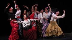 Curso Baile Flamenco - Técnica Básica