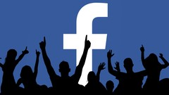 Netcurso-crescer-no-facebook