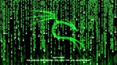 Hacker Ético Profissional com Kali Linux
