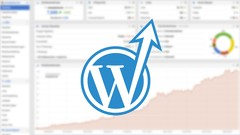 wpSEO - WordPress SEO Grundlagen
