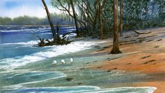 Painting Wild Places with Watercolors:  Cayo Costa