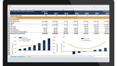 Excel Crash Course: Master Excel for Financial Analysis