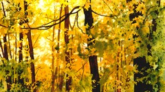 Painting Wild Places with Watercolors: Autumn Trees