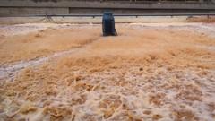 Tratamiento de Aguas Residuales con Lodos / Fangos Activados