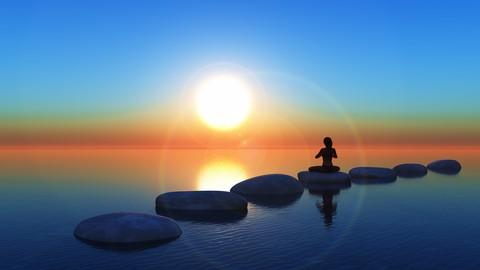 Netcurso - //netcurso.net/yoga-sutras-en-video-la-sabiduria-de-saber-vivir-la-vida