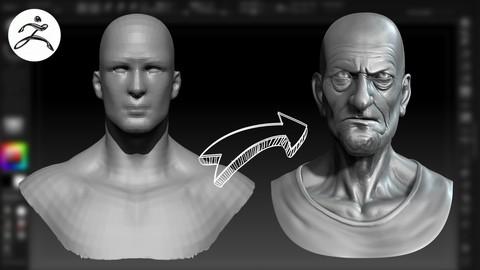 Netcurso-curso-profesional-de-zbrsuh-esculpido-de-un-busto-en-3d