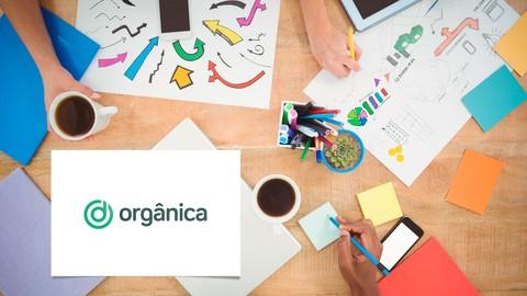 Netcurso-marketing-digital-basico-para-empresas