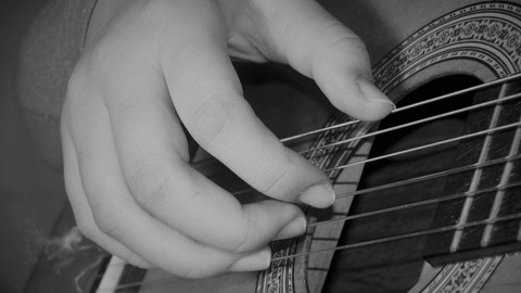 Learn Fingerstyle Guitar (& Read Music) in Real Time Course