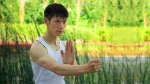 [Great Course Coupon] – Learn Wing Chun Sil Lim Tao At Home FREE! With Sifu David