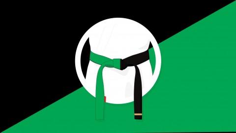 Six Sigma Green and Black Belt Combo *