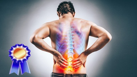 Yoga for Back Pain Relief & Prevention✅Certification Course