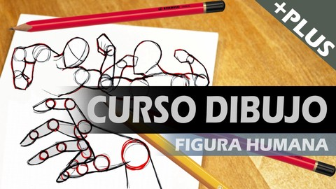 Netcurso-curso-de-dibujo-figura-humana