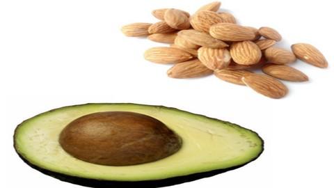 Netcurso-nutrition-mastery-healthy-fats
