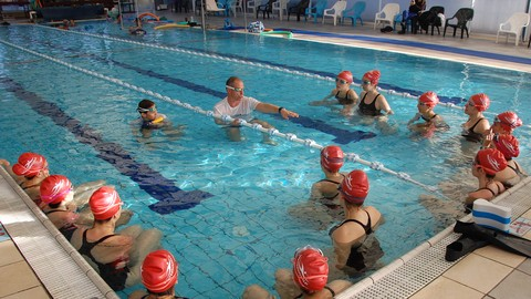 Learn to swim the basics of freestyle swimming