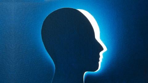 Netcurso-neurociencia-en-los-negocios