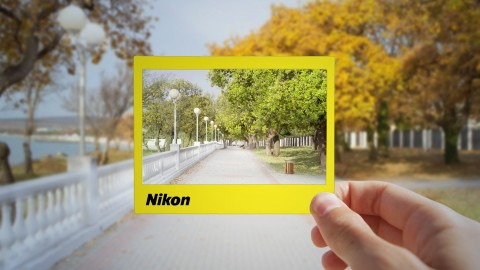 Beginner Nikon Digital SLR (DSLR) Photography