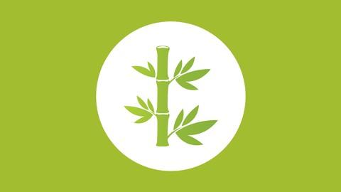 Netcurso - //netcurso.net/guia-para-acercarse-al-conocimiento-del-bambu