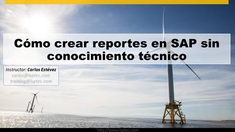 Netcurso-como-crear-reportes-en-sap-sin-conocimiento-tecnico