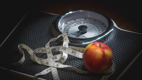 Netcurso - //netcurso.net/curso-de-actualizacion-en-dietoterapia-de-la-obesidad