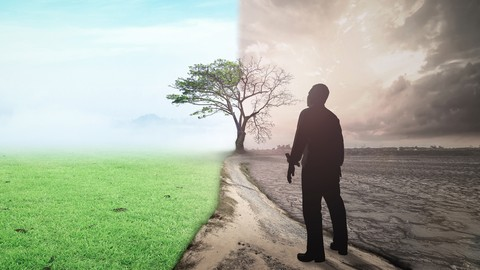 10 Timeless Transformation Truths