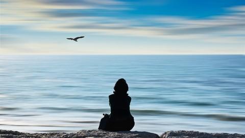 Netcurso - //netcurso.net/fr/apprendre-auto-hypnose-meditation-visualisation-chakra-conscience