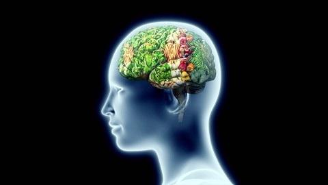 Netcurso-secret-to-losing-weight-with-brain-power