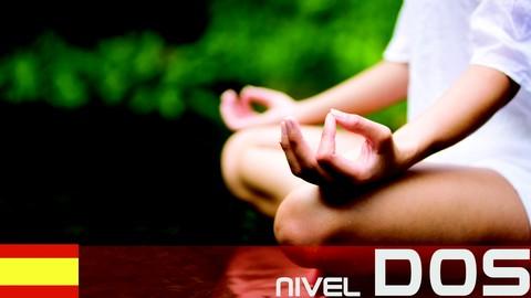 Netcurso-chi-kung-y-meditacion-para-la-salud-nivel-2
