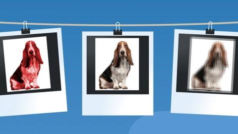 Editar y Retocar Fotografas con Picasa