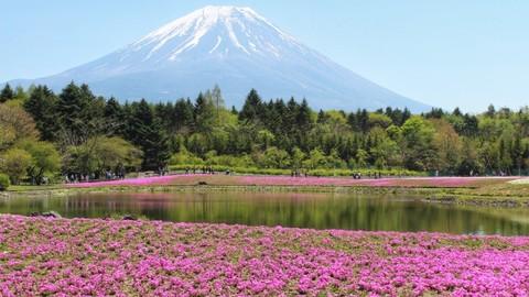 Non-teacher guide to teaching English in Japan