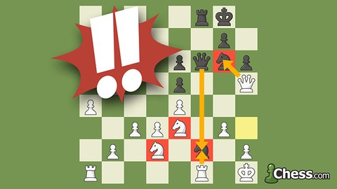 Netcurso-the-easy-way-to-learn-and-win-at-chess