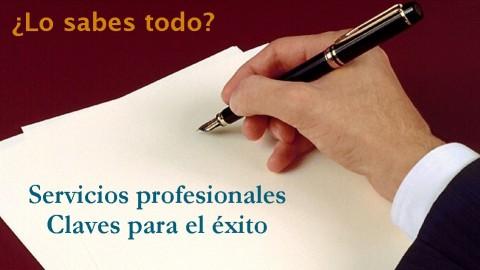 Netcurso-servicios-profesionales-claves-para-tener-exito