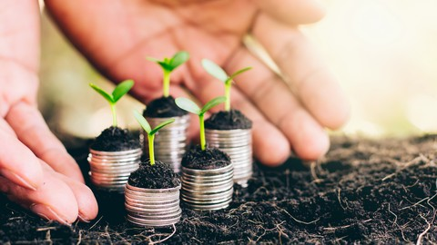 Business Winners - Learn how to grow your small business