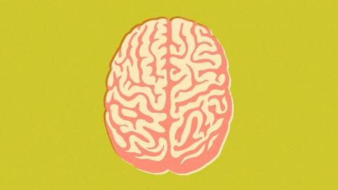 Netcurso - //netcurso.net/pt/hiper-memoria-hiper-aprendizagem