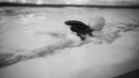 Netcurso - //netcurso.net/ludoqua-como-metodologia-de-ensenanza-en-natacion-infantil