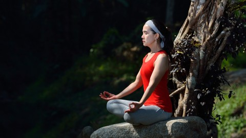 Authentic Yoga Experience Series 2
