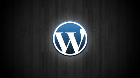 Netcurso-wordpress-cms-basics