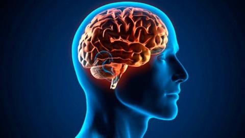 Netcurso - //netcurso.net/aprende-sobre-cefaleas-urgencias-medicina-dolor-cabeza