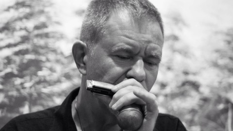 Learn amazing harmonica skills to wow your audience - easy!