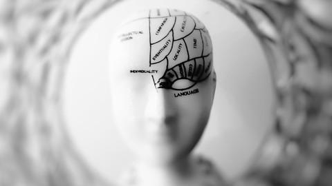 Sale : Udemy: Principios de la Programacin Neurolinguistica y el Coaching