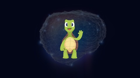 Deep Learning, Transfer Learning and Turtles