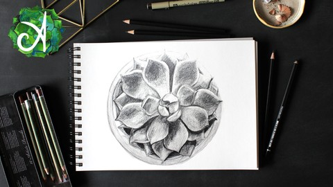 2234604 f708 4 - Pencil Drawing courses