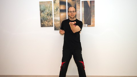 [Udemy Coupon] Siu Nim Tao – The first form in Wing Chun